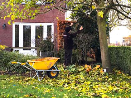 Winterklaar Maken Tuin : Tuin voorbereiden op de winter u de prachttuinen