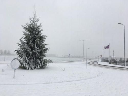 bedrijfskerstboom in sneeuw