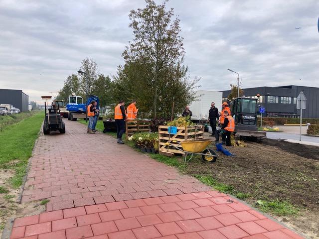 Parkrenovatie De Hoek